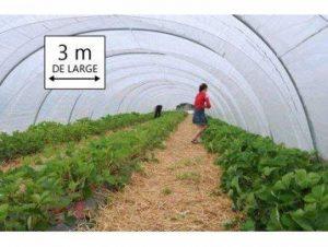 Tecplast PR1310 Bâche serre film PEBD anti UV 24 mois largeur 3 m x 6 m 200 µ Transparent de la marque Tecplast image 0 produit
