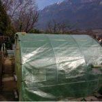Tecplast PR1310 Bâche serre film PEBD anti UV 24 mois largeur 3 m x 6 m 200 µ Transparent de la marque Tecplast image 3 produit