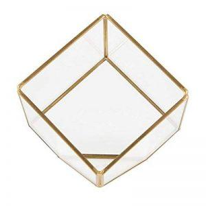 Terrarium cubique en laiton, mini serre, jardin de plantes de la marque Sass Belle image 0 produit