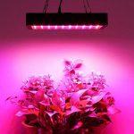 TOPLANET Dimmable 300w Lampe pour Plante Culture Spectre complet LED Grow Light UV&IR Lampe de Croissance pour Indoor Grow Box/Hydroponique Plante Semis de la marque TOPLANET image 2 produit