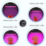 TOPLANET Dimmable 300w Lampe pour Plante Culture Spectre complet LED Grow Light UV&IR Lampe de Croissance pour Indoor Grow Box/Hydroponique Plante Semis de la marque TOPLANET image 1 produit