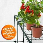 tunnel de protection pour tomates TOP 4 image 4 produit
