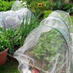 Tunnel, filet de jardin tunnels | Jardin cloches | Serre Créoles | Jardin Tunnel pour mini Petite serre à tomates par Nwss de la marque NWSS image 3 produit