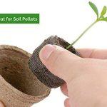 Urban Sprout Pots biodégradables100pots de plantation en fibres pour semis6cm Rond de la marque Urban Sprout image 1 produit