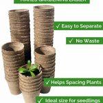 Urban Sprout Pots biodégradables100pots de plantation en fibres pour semis6cm Rond de la marque Urban Sprout image 4 produit