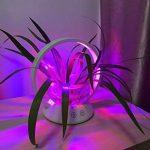 verre pour serre de jardin TOP 8 image 4 produit