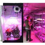 VINGO® 15W LED Panneau Lampe de Croissance 225 LEDs Rouge&Bleu Grow Light Légumes Hydroponique Fleur Plante Serre Garden Plantes de la marque fsders image 2 produit