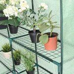 Yongtaifeng Serre de Jardin Chaude Maison Tente de Plante Serre pour tomates 143x143x195cm 6 Étages en Vert Transparent de la marque Yongtaifeng image 4 produit